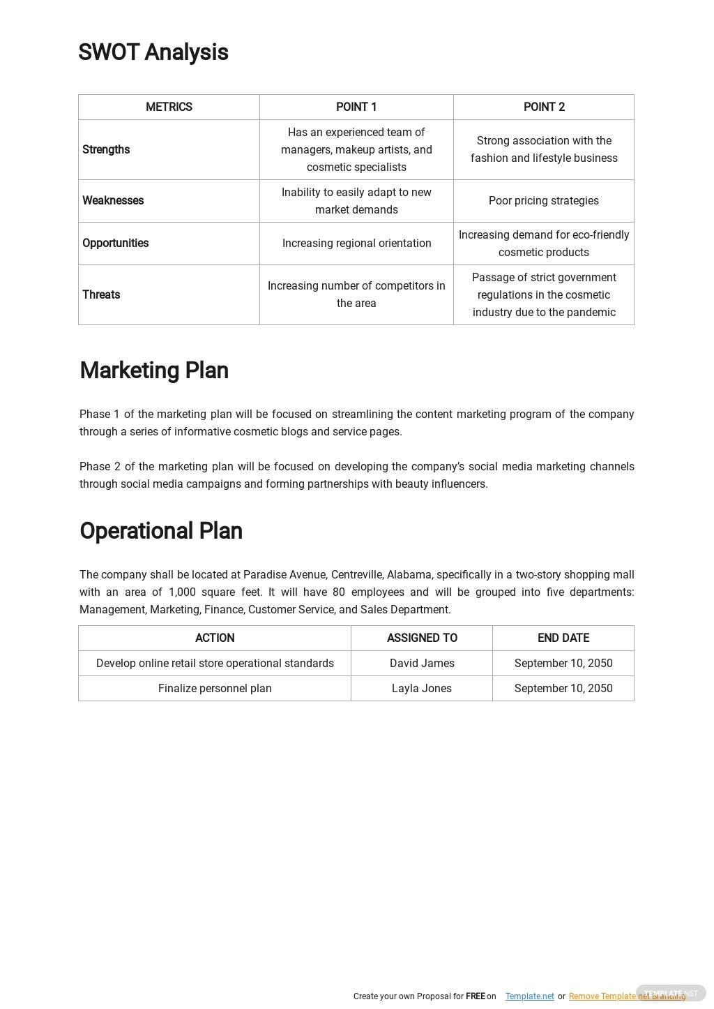 Retail Online Store Business Plan Template 2.jpe