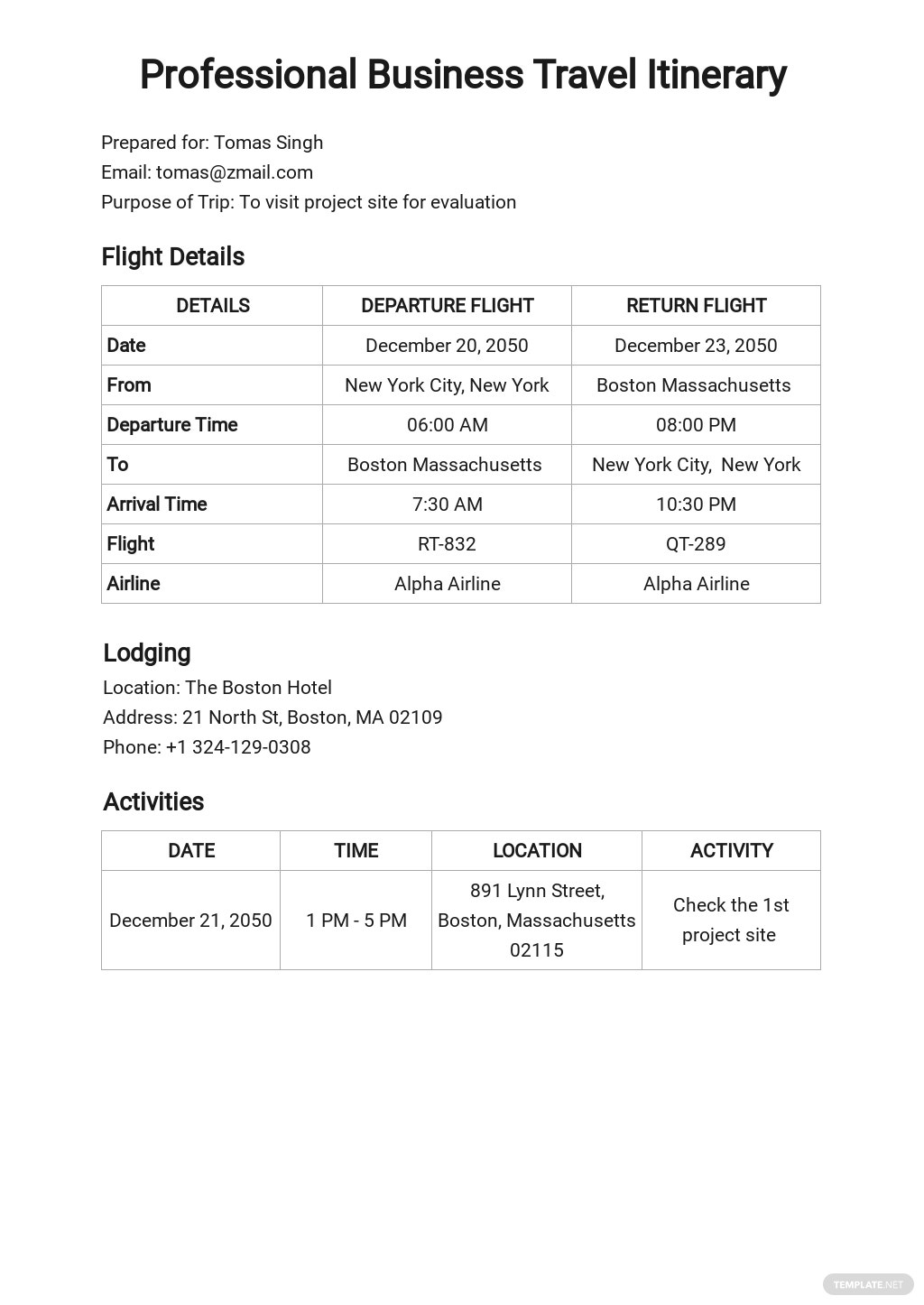 Professional Business Travel Itinerary Template
