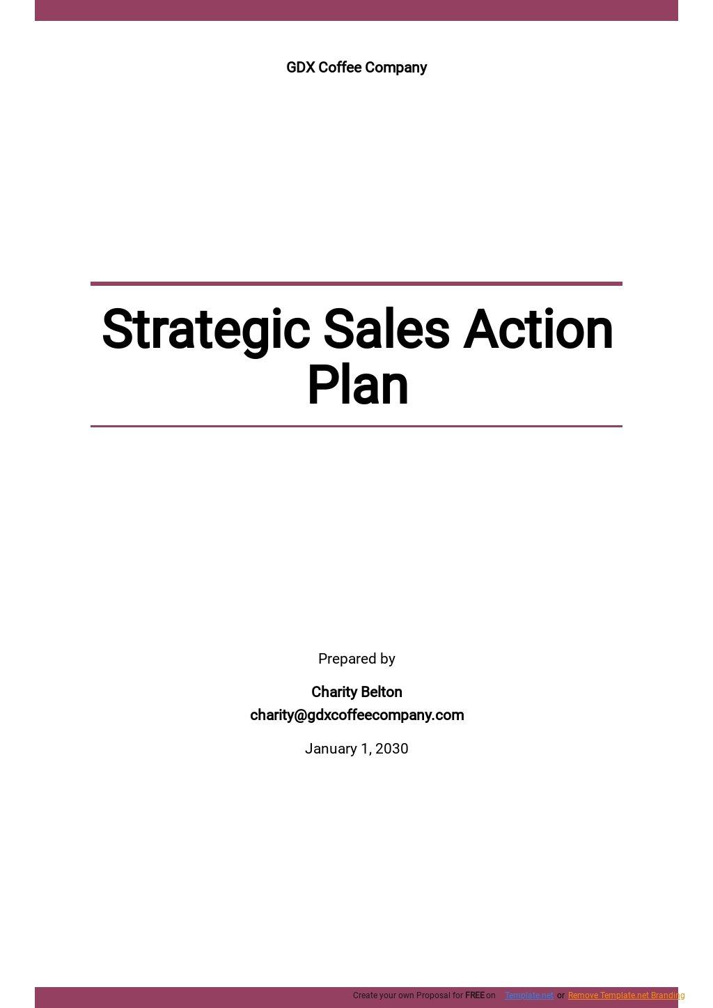 Strategic Sales Action Plan Template.jpe