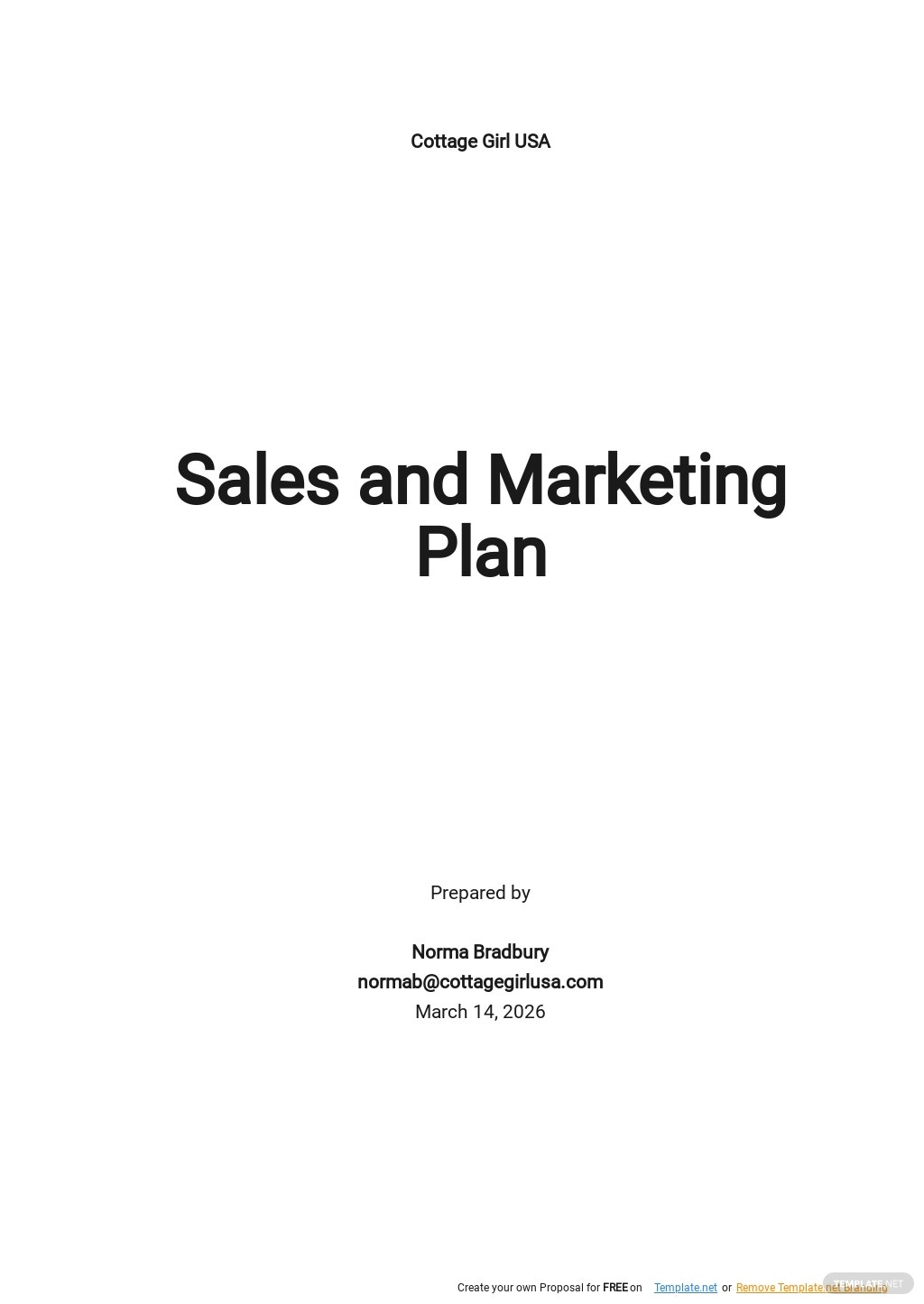 Simple Sales And Marketing Plan Template.jpe