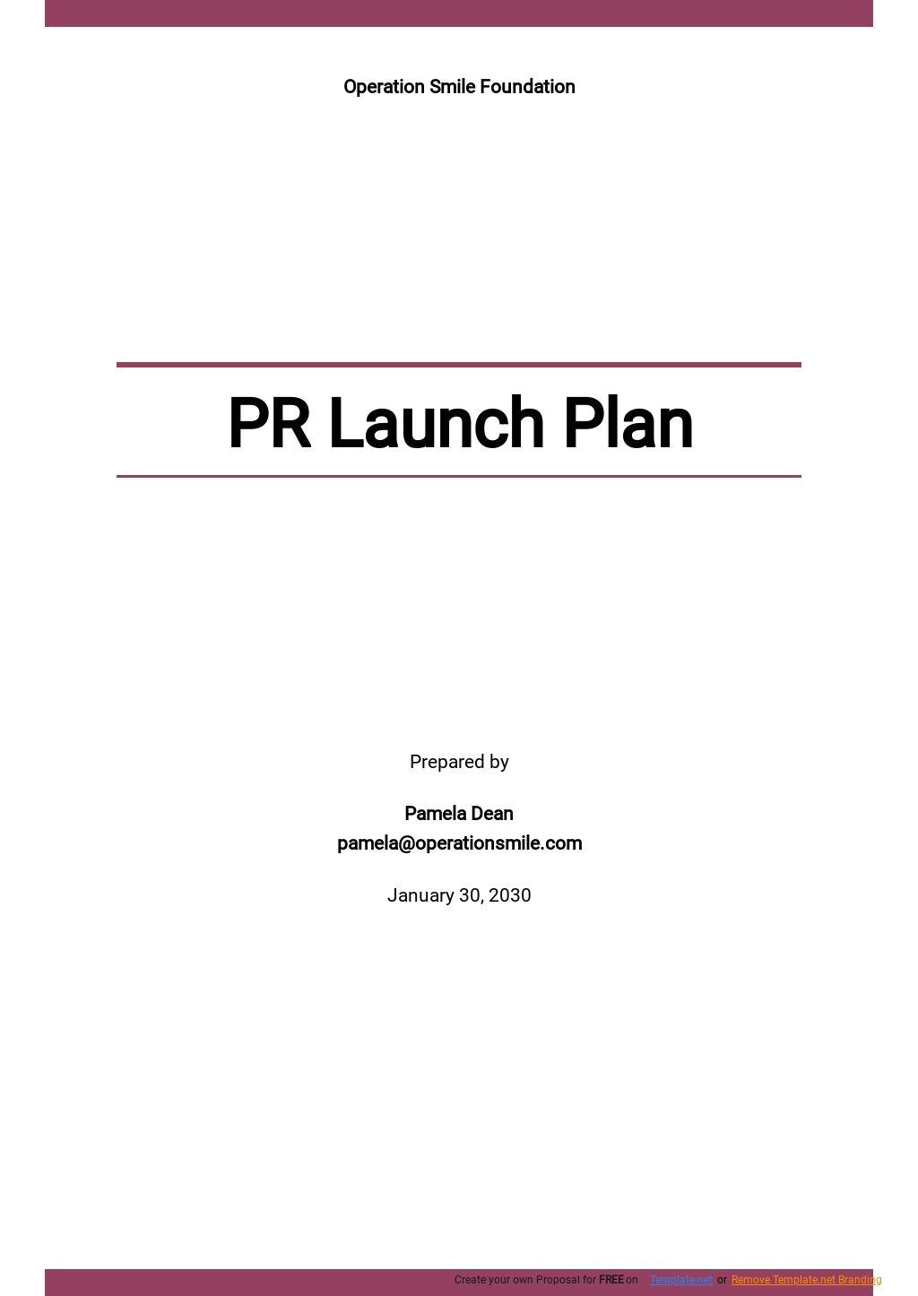 PR Launch Plan Template.jpe