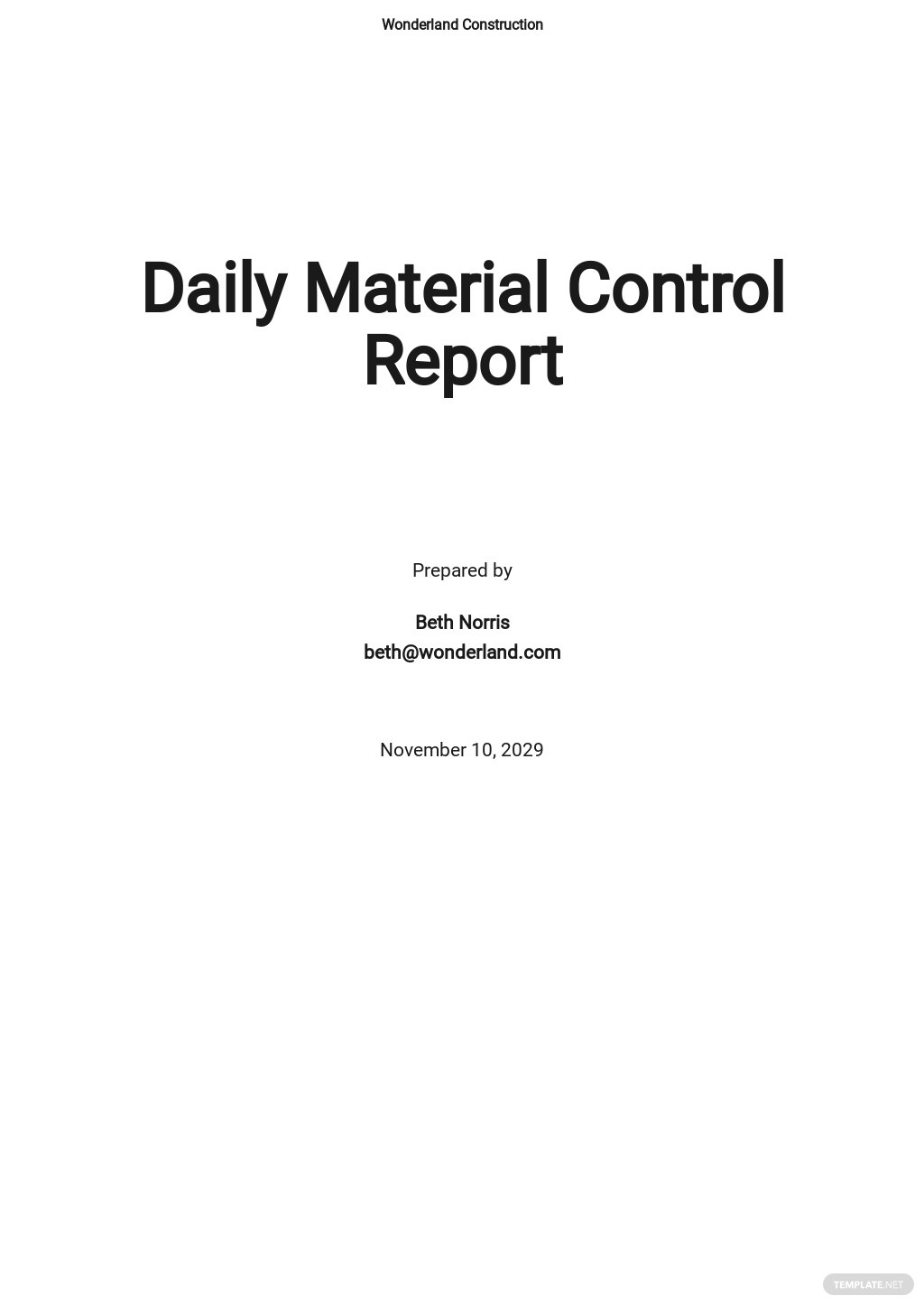 Free Daily Material Control Report Template.jpe