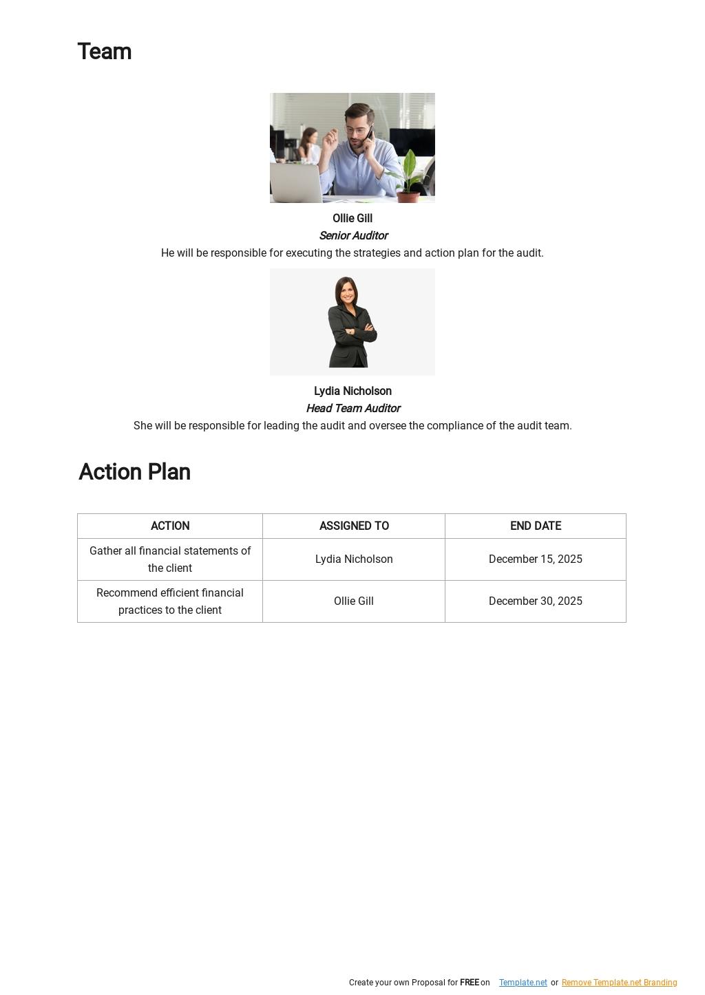 Audit Action Plan Template 2.jpe