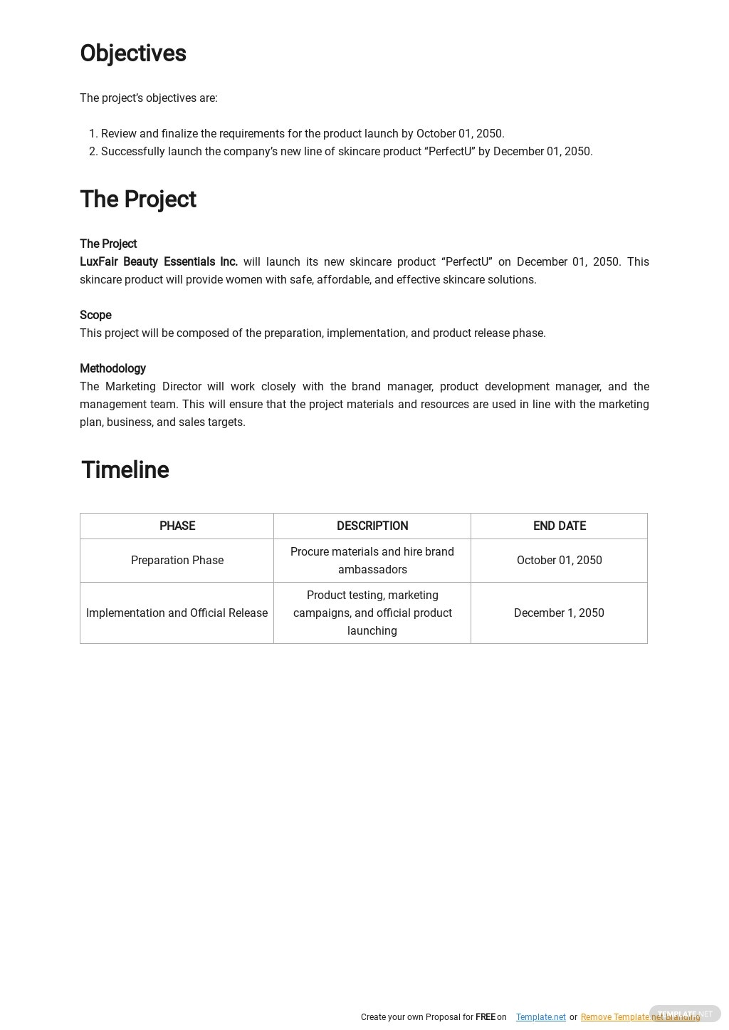 New Product Launch Plan Template 1.jpe
