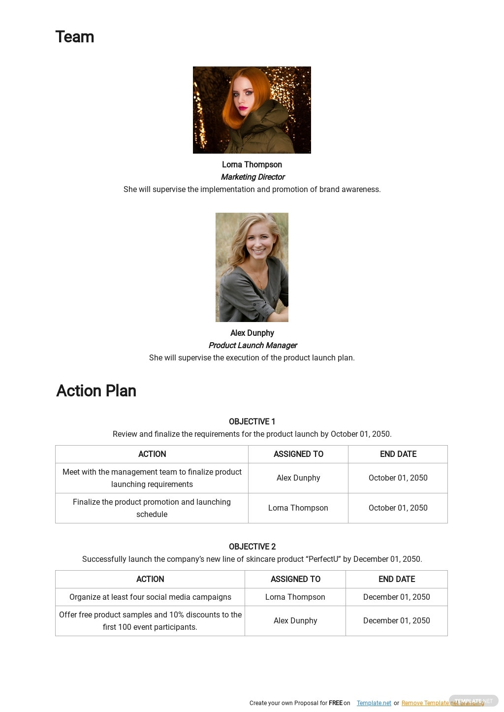 New Product Launch Plan Template 2.jpe