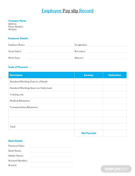 Employee Pay Slip Record Template
