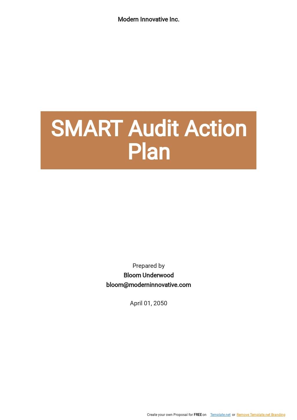 Smart Audit Action Plan Template.jpe