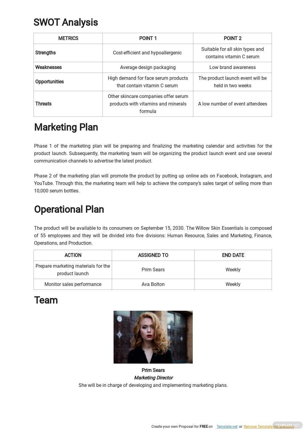 Product Launch Business Plan Template 2.jpe
