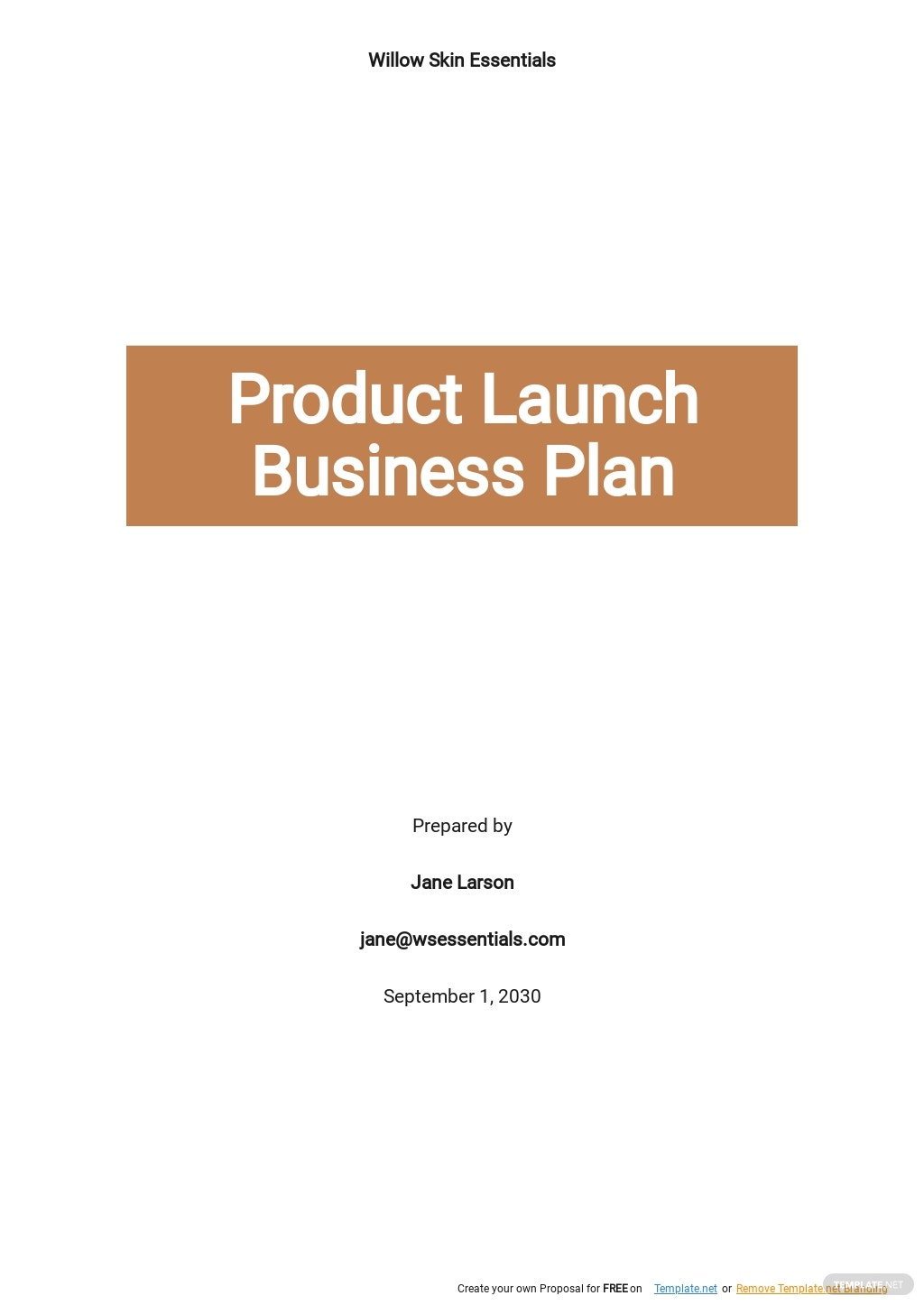 Product Launch Business Plan Template.jpe