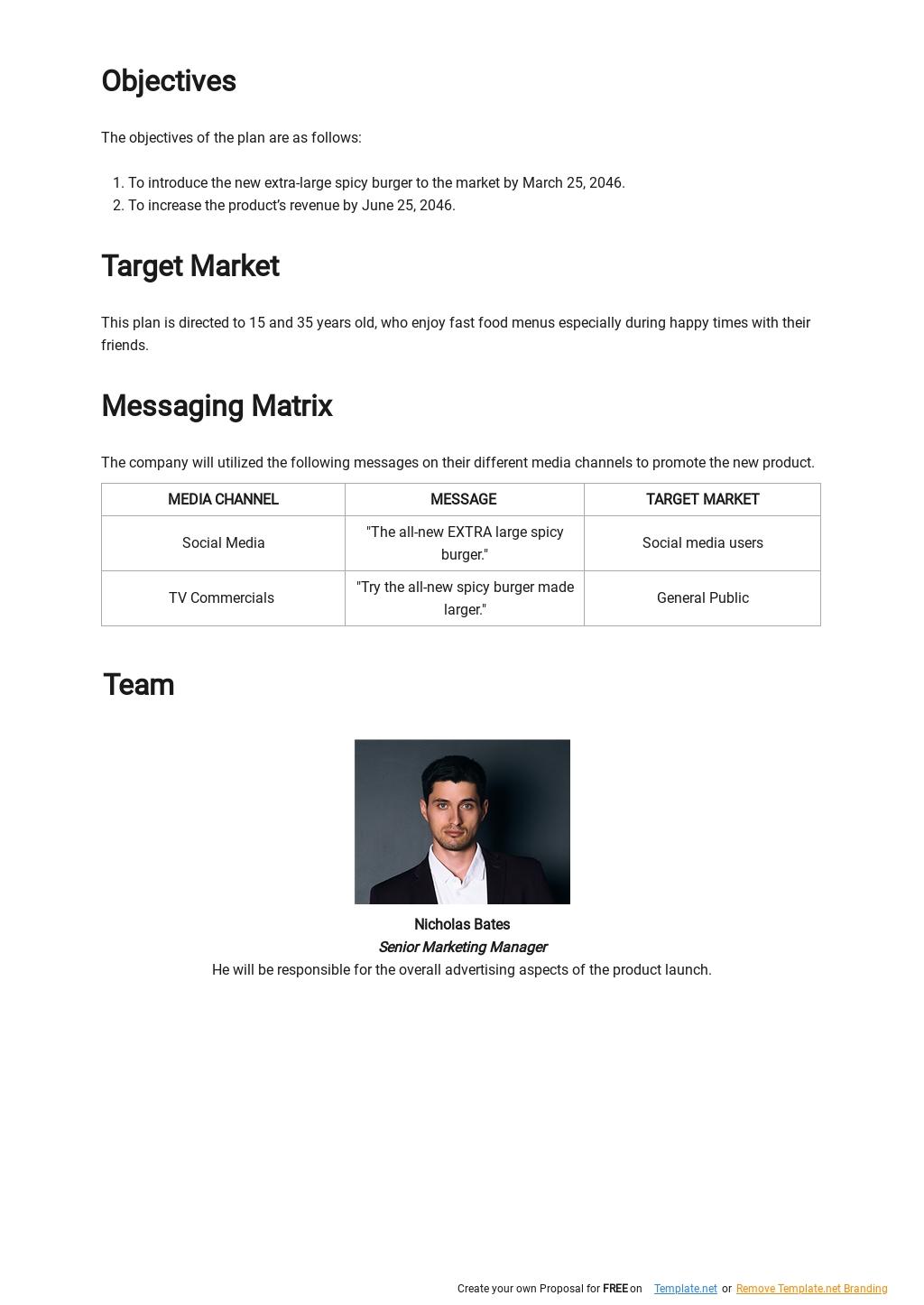 Product Launch Communication Plan Template 1.jpe