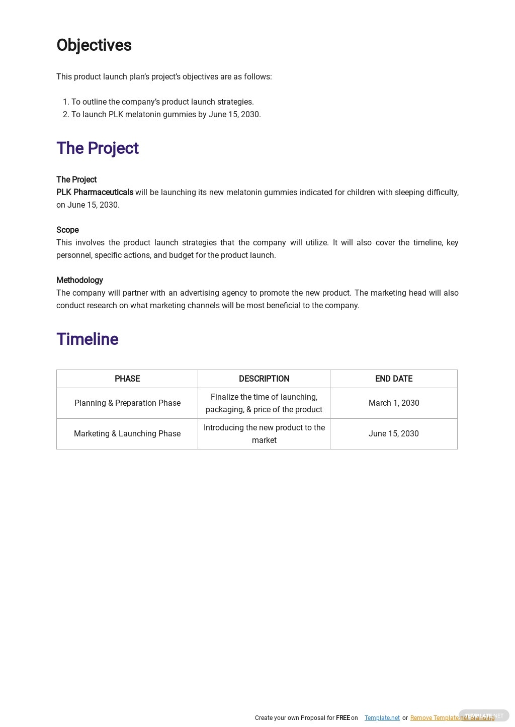Pharmaceutical Product Launch Plan Template 1.jpe