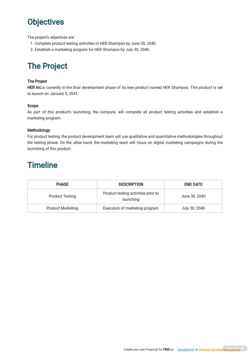 Free Sample Product Launch Plan Template 1.jpe