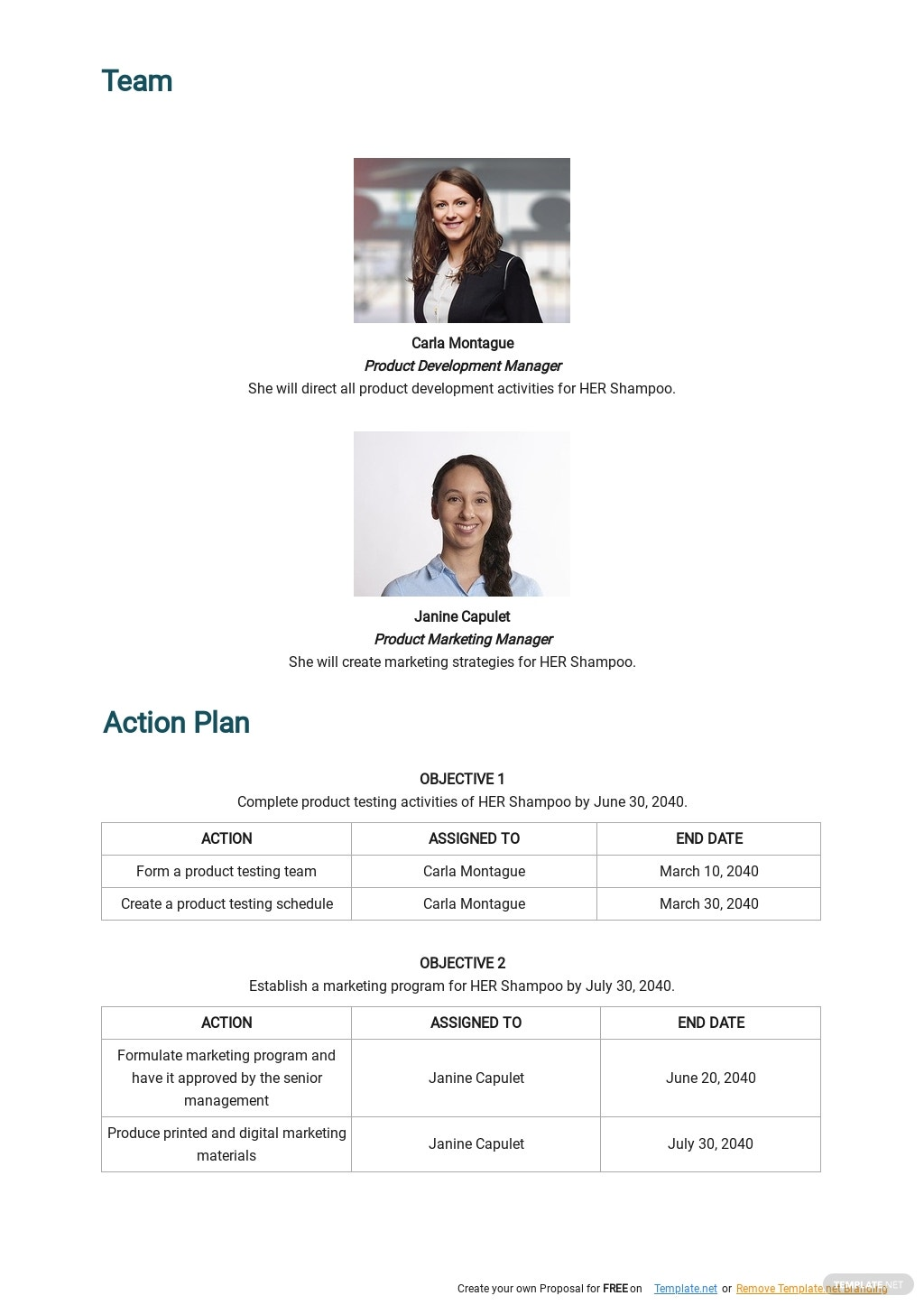 Free Sample Product Launch Plan Template 2.jpe