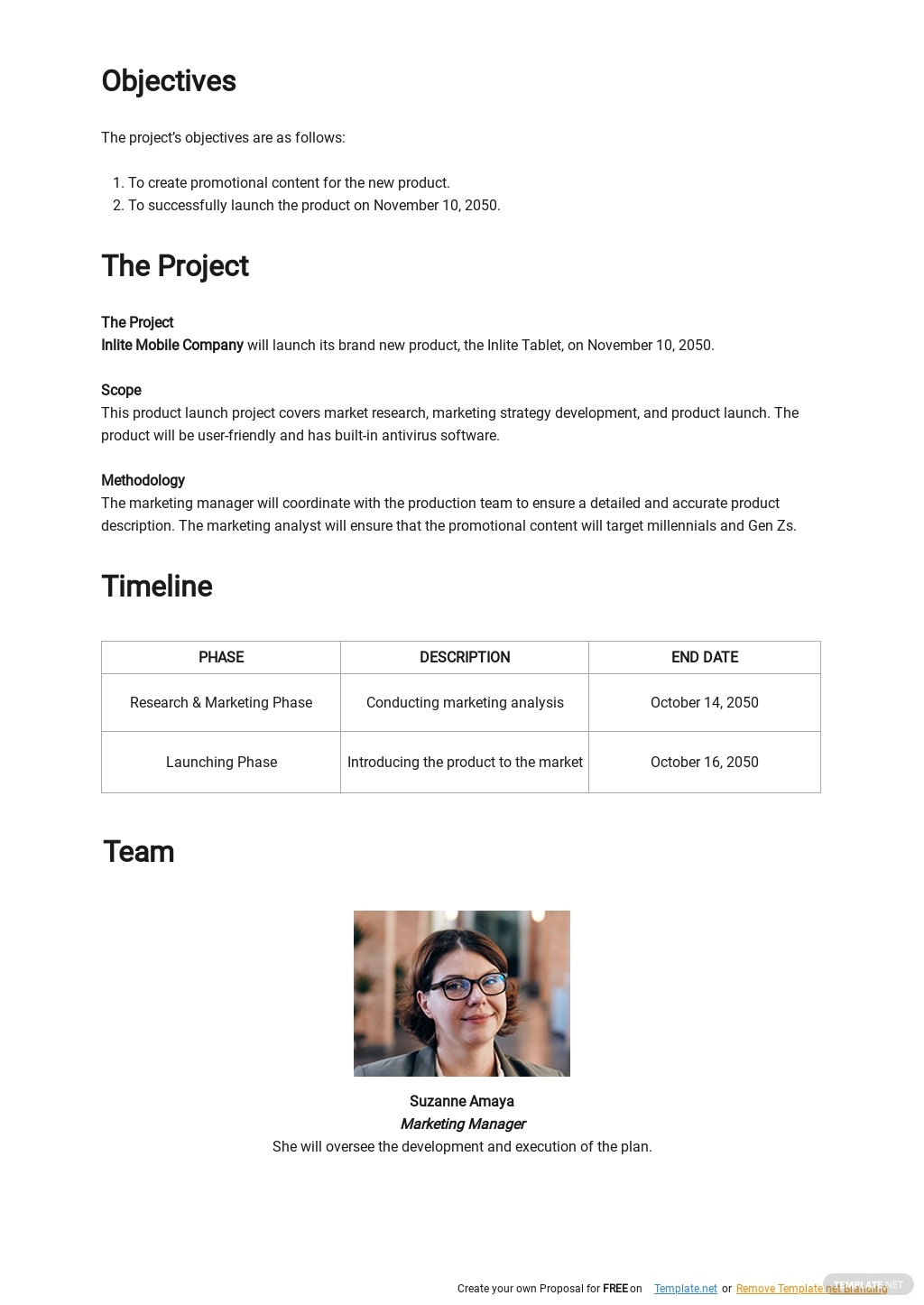 Product Launch Project Plan Template 1.jpe