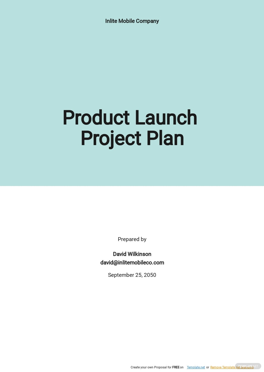 Product Launch Project Plan Template.jpe