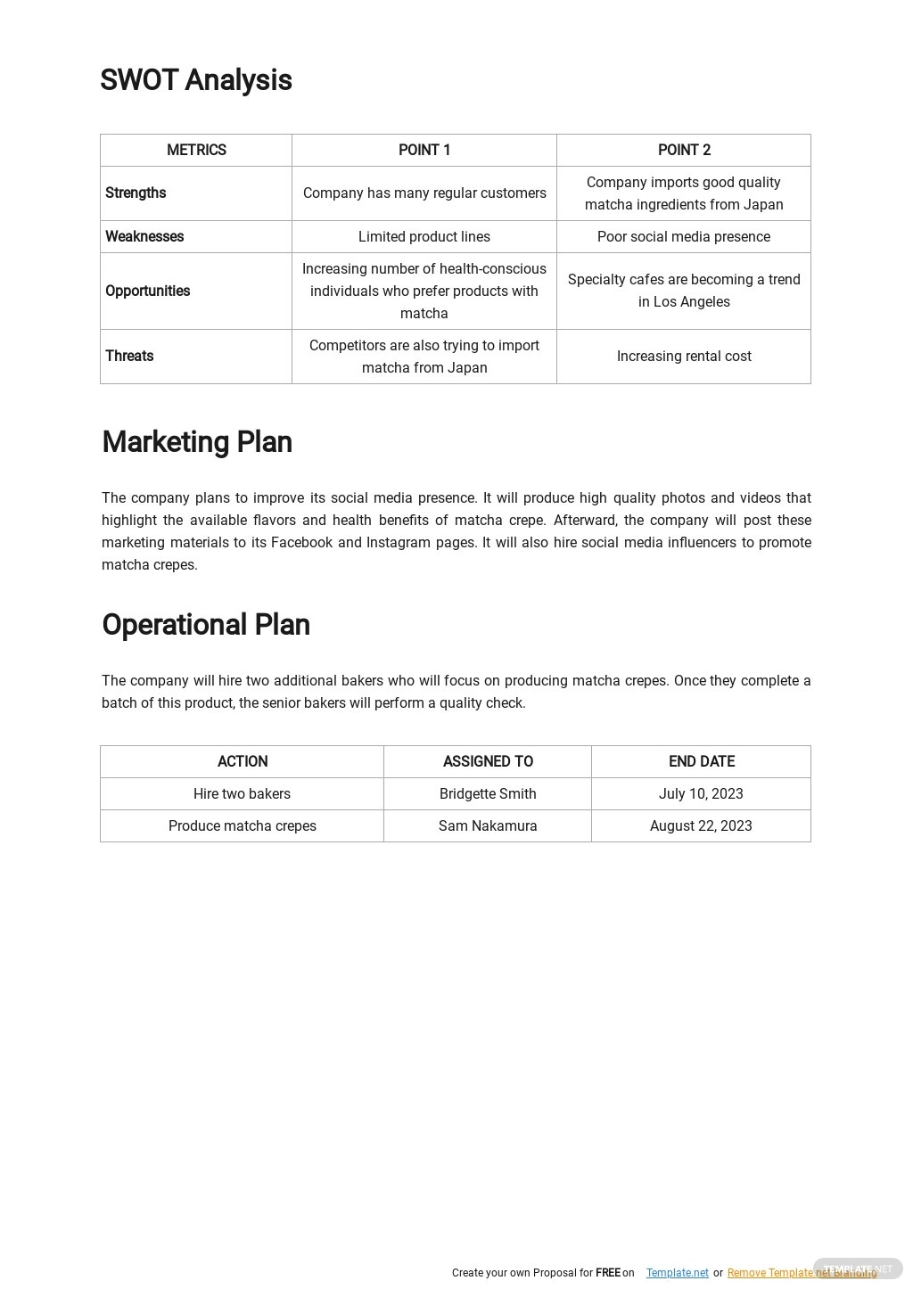 New Product Launch Business Plan Template 2.jpe