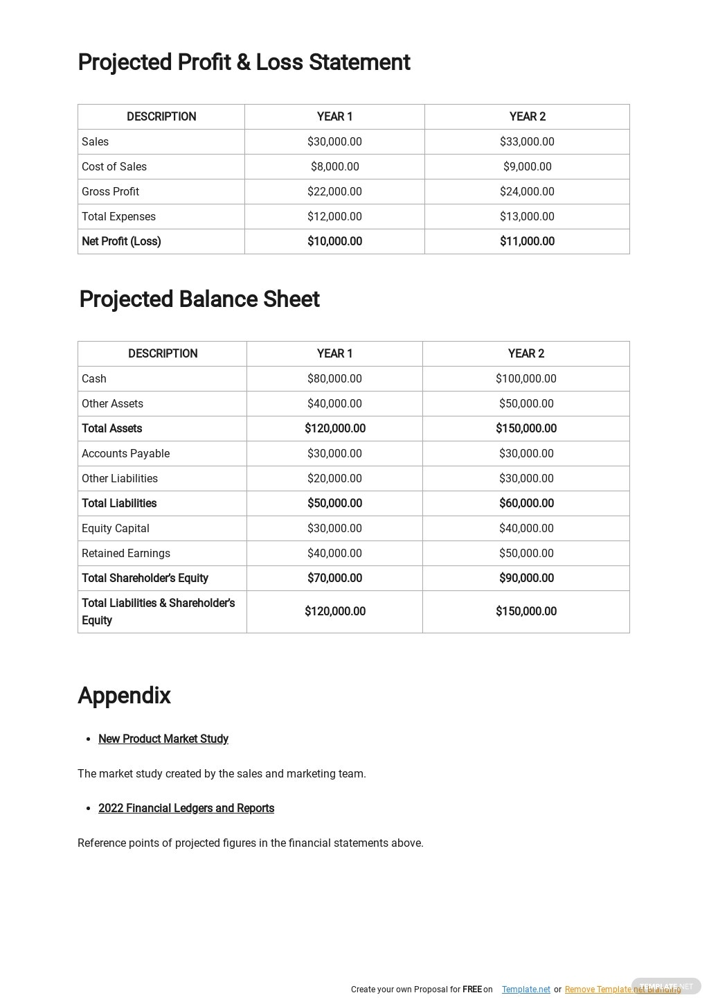 New Product Launch Business Plan Template 4.jpe