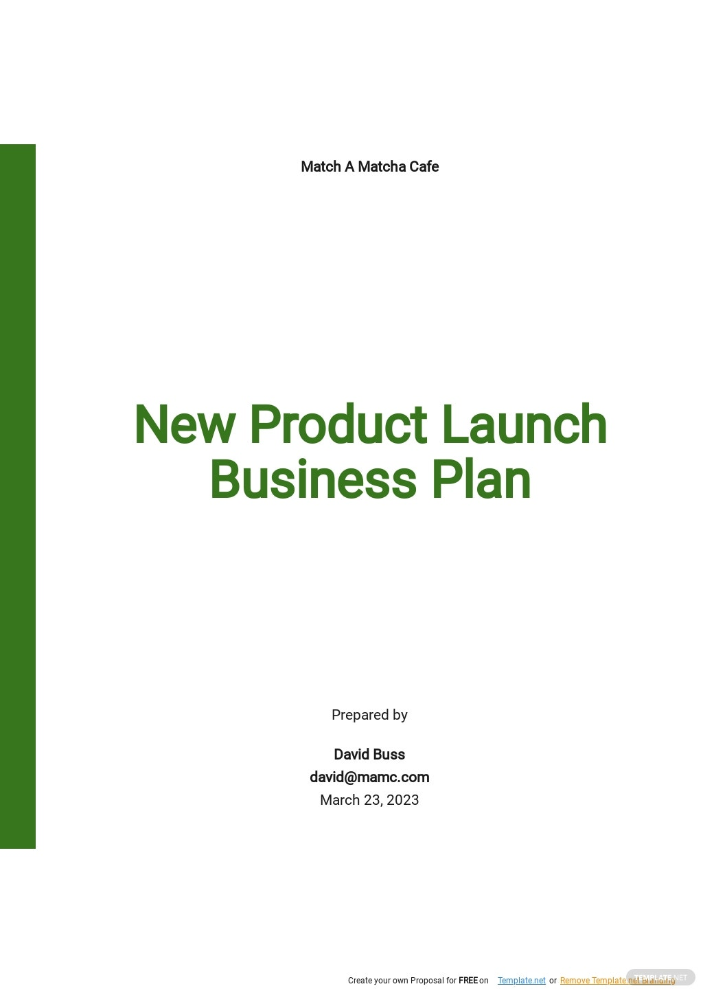 New Product Launch Business Plan Template.jpe