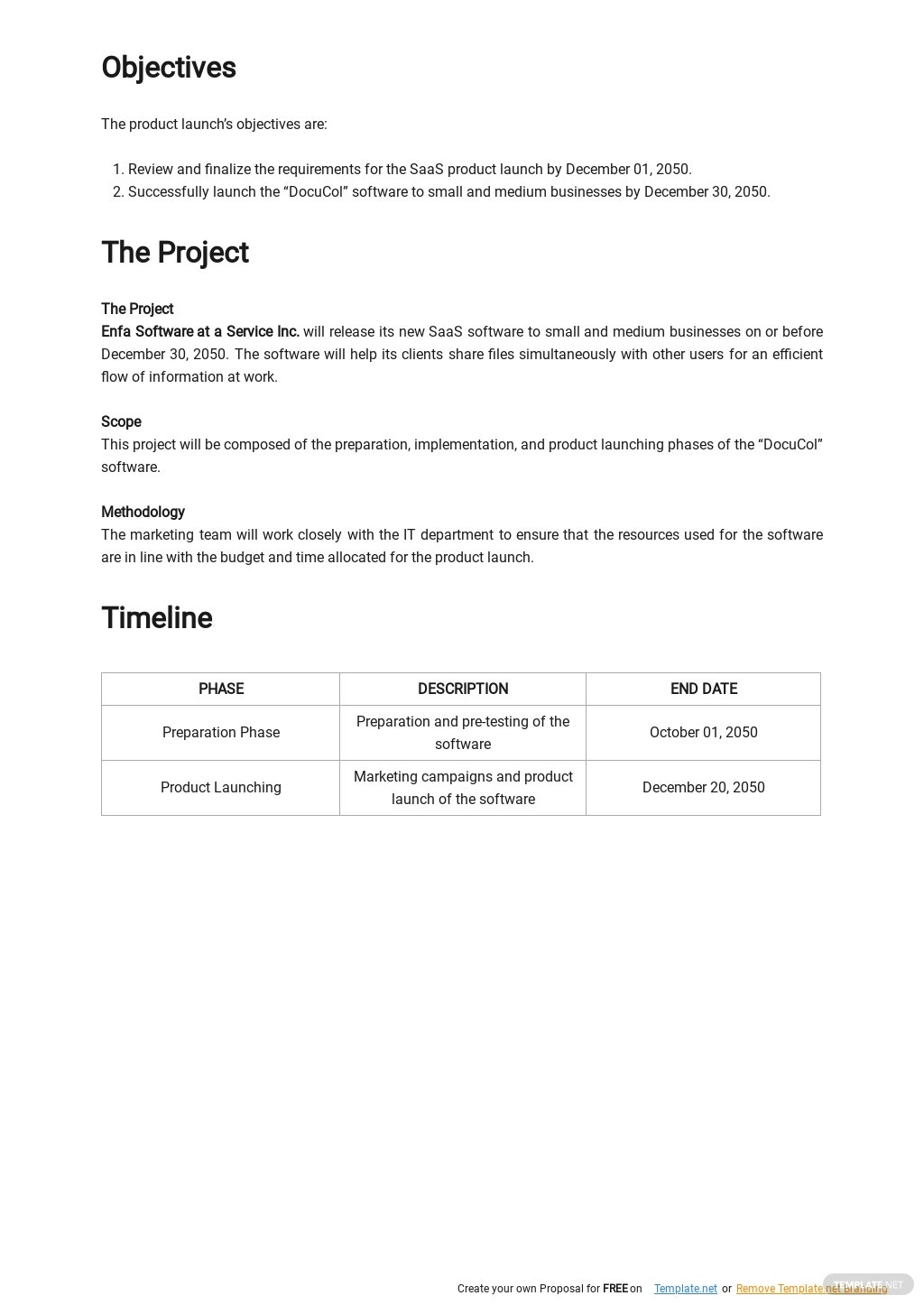 SaaS Product Launch Plan Template 1.jpe