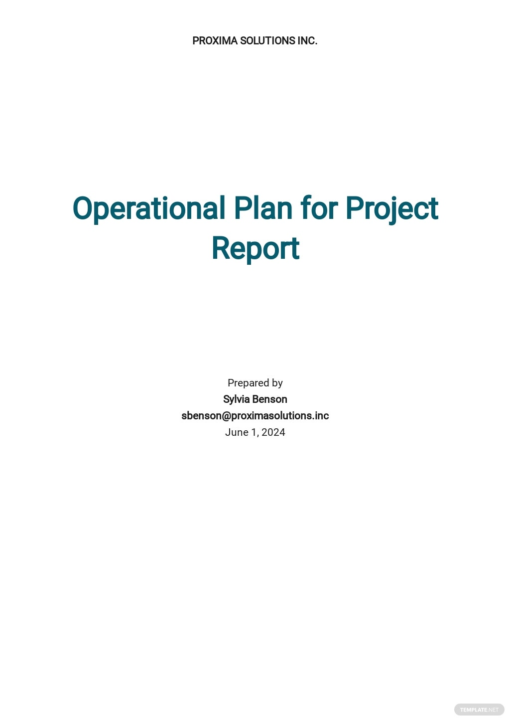Operational Plan For Project report Template