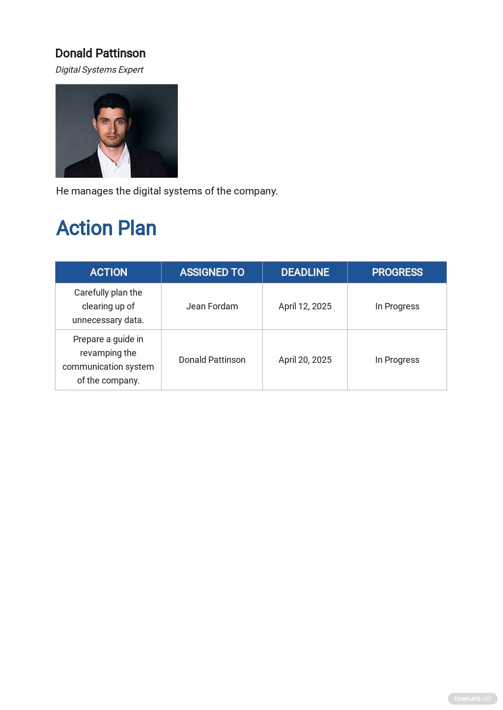 Free Operational System Plan Template 3.jpe