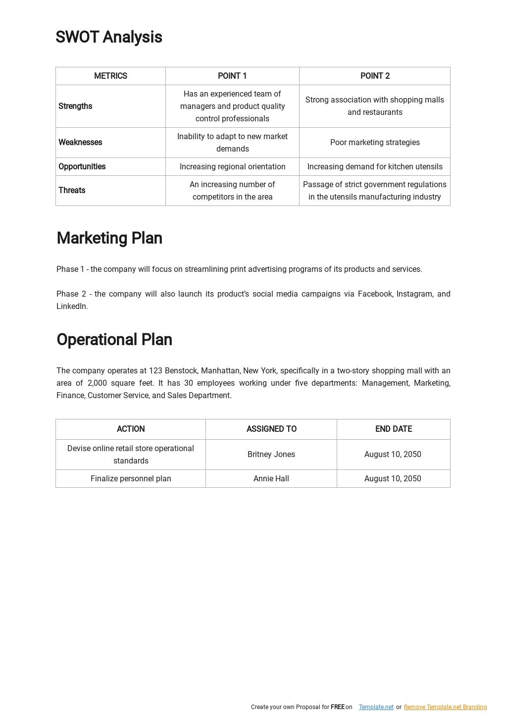 5 year Retail Business Plan Template 2.jpe