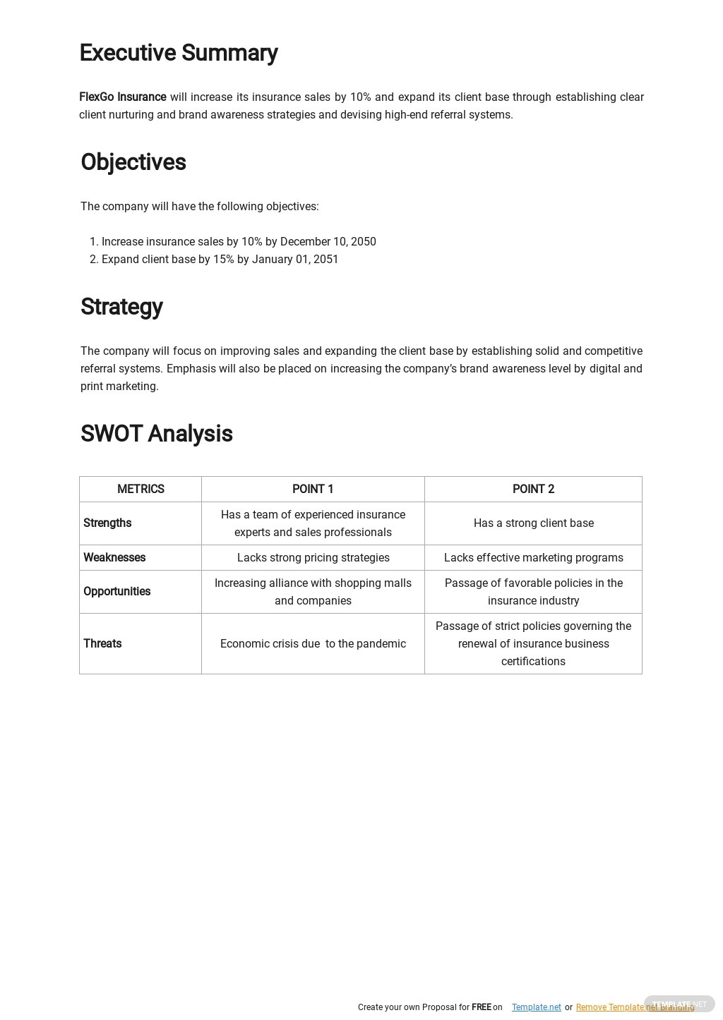 Insurance Sales Strategy Plan Template 1.jpe