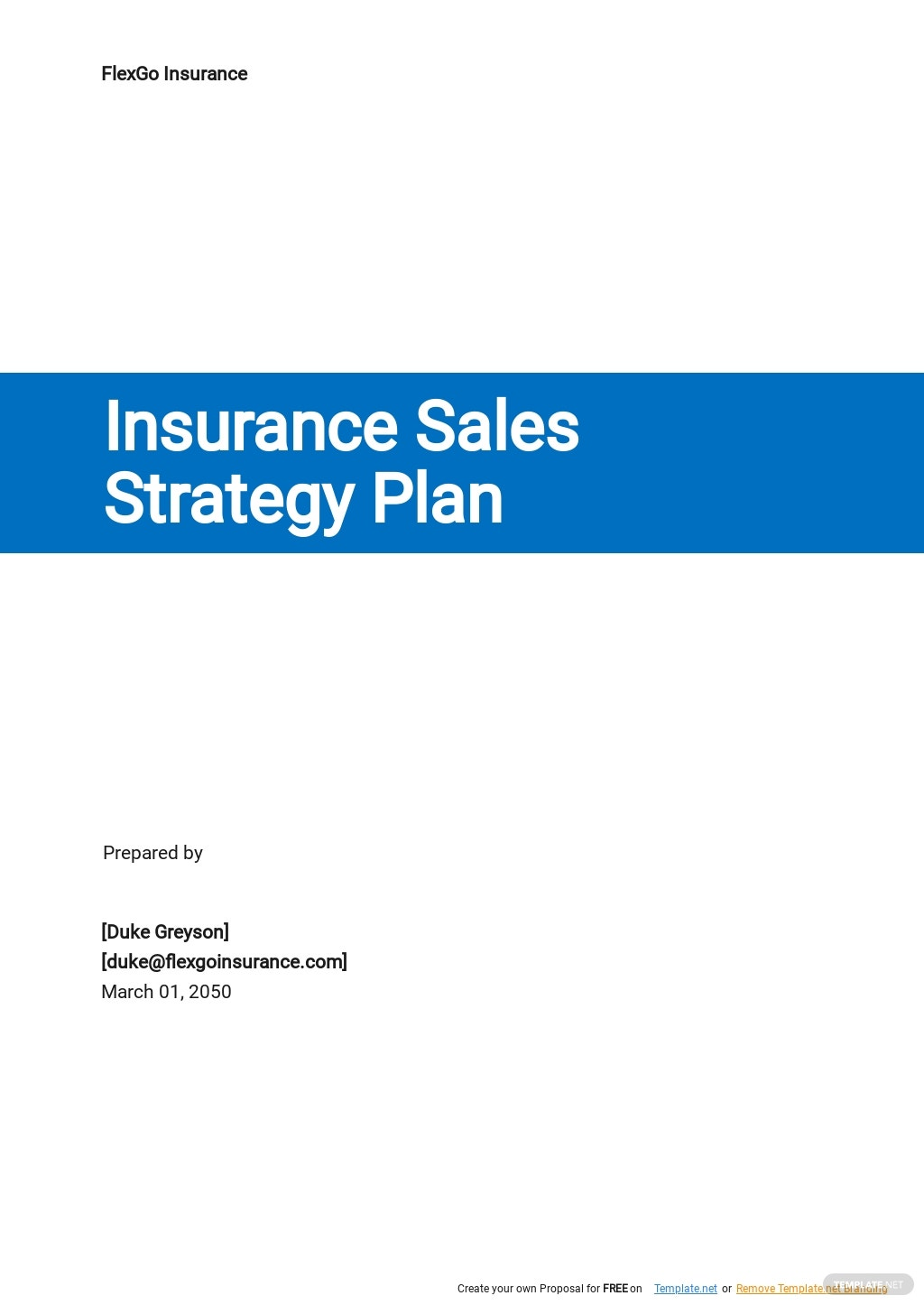 Insurance Sales Strategy Plan Template.jpe