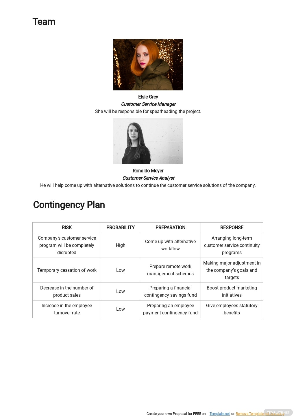 Customer Service Continuity Plan Template 2.jpe