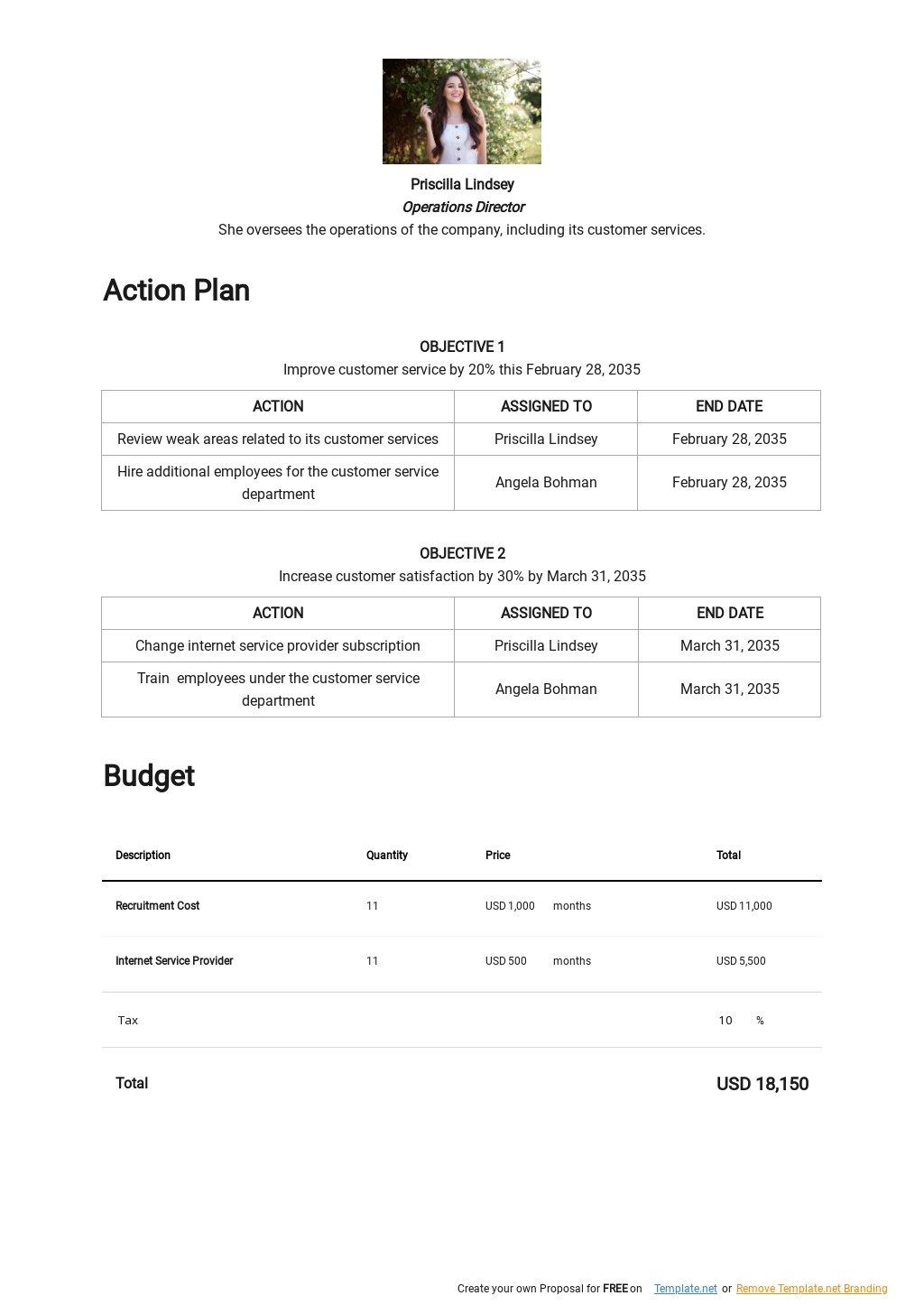 Customer Service Improvement Plan Template 2.jpe