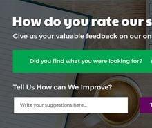 Free Website Survey Pop-up Template