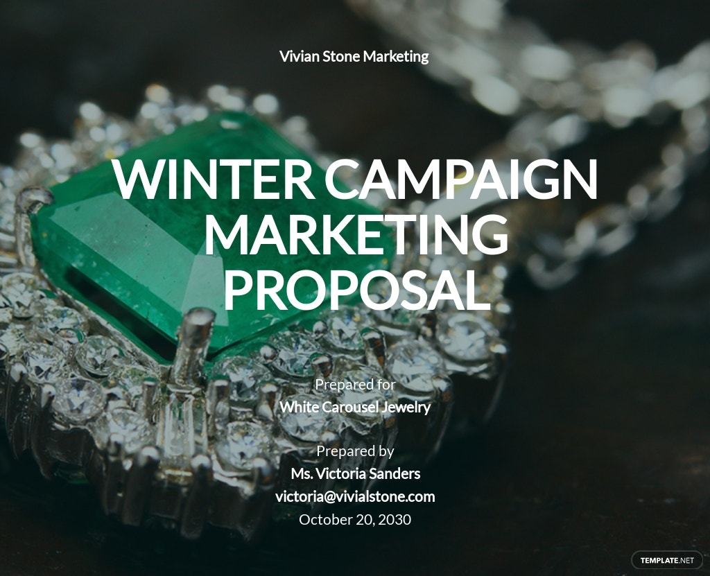 Marketing Recap Proposal Template