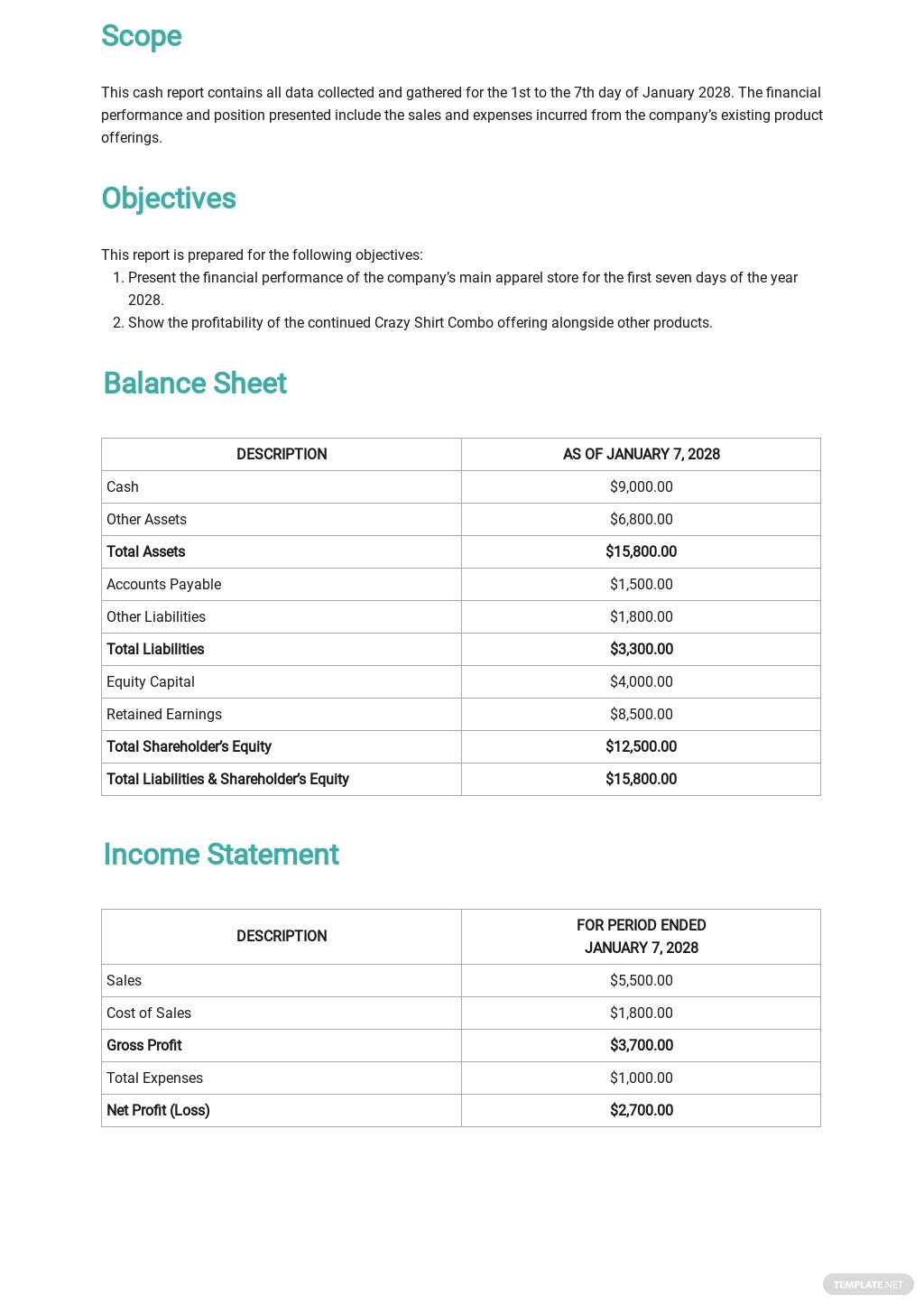 Daily Cash Report Template 1.jpe