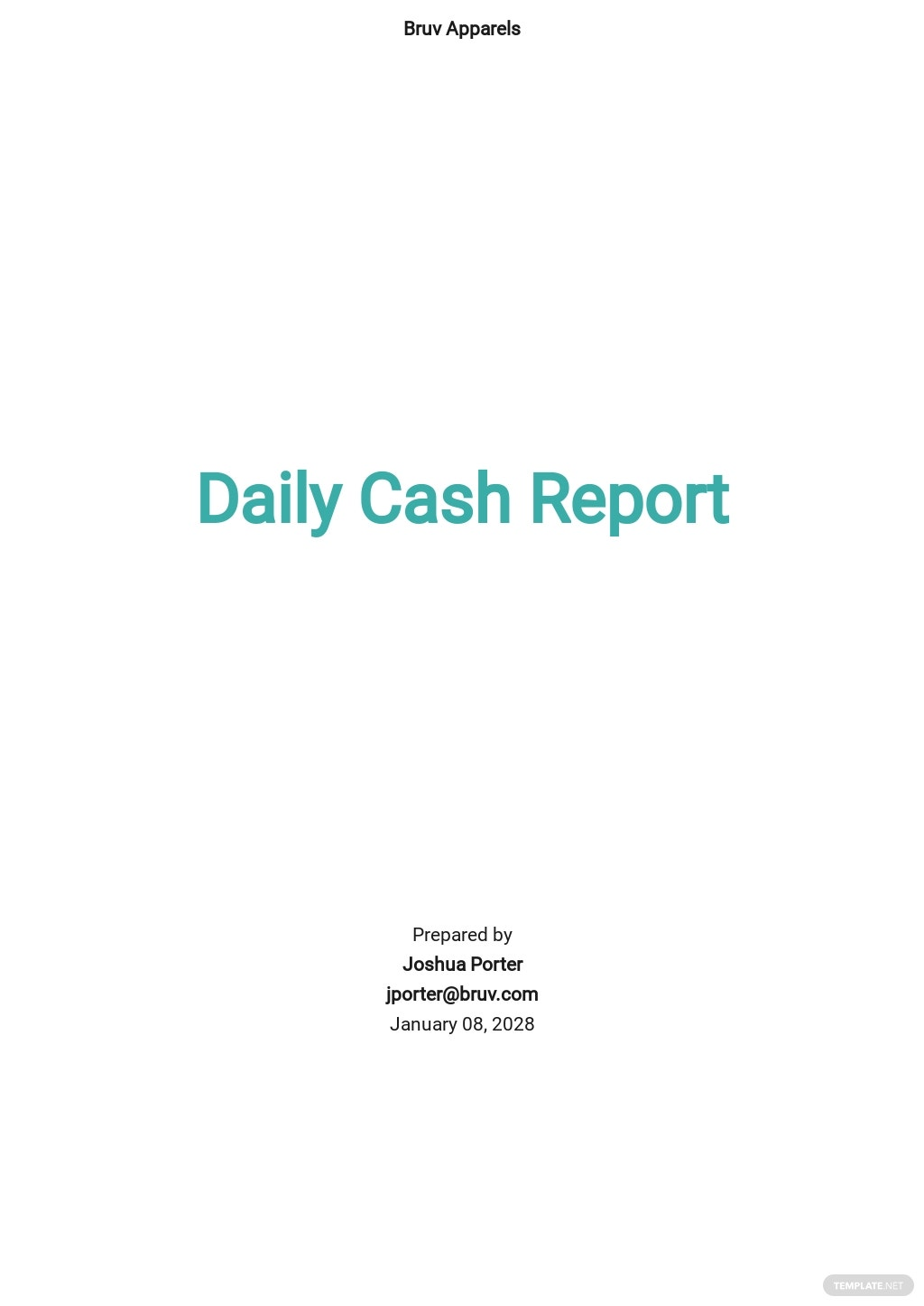 Daily Cash Report Template.jpe