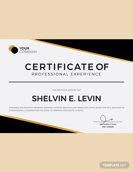Professional Experience Certificate