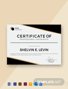 Free Professional Experience Certificate Template