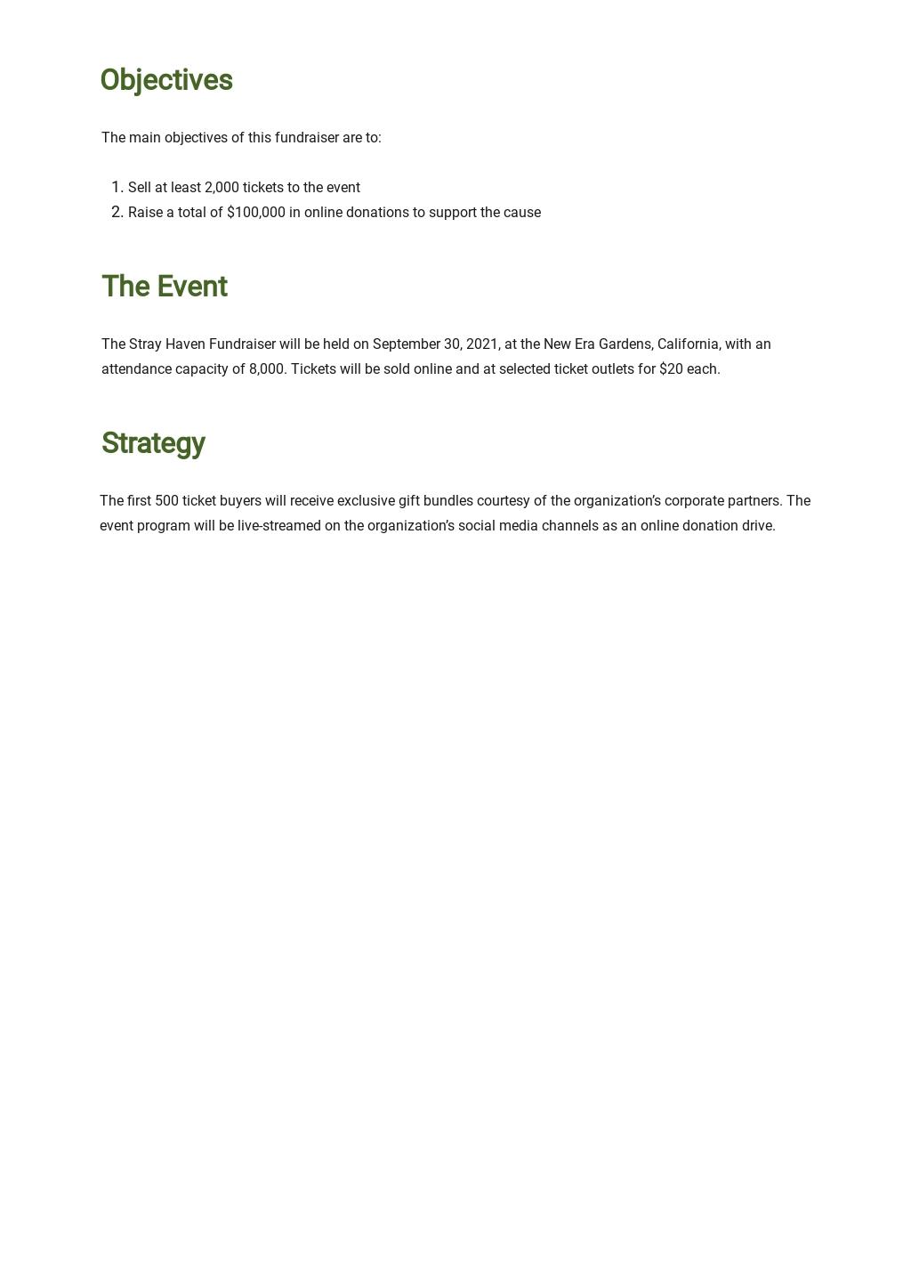 Sample Fundraising Plan Template 1.jpe