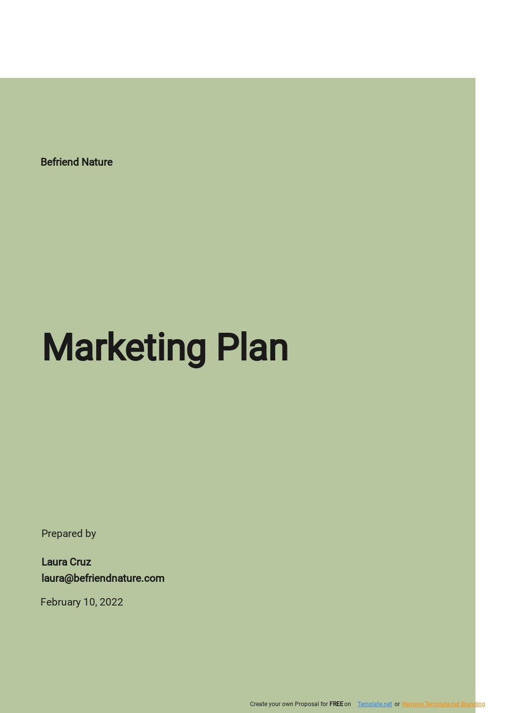 Simple Marketing Plan Template.jpe