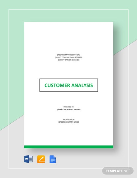 Customer Analysis Template