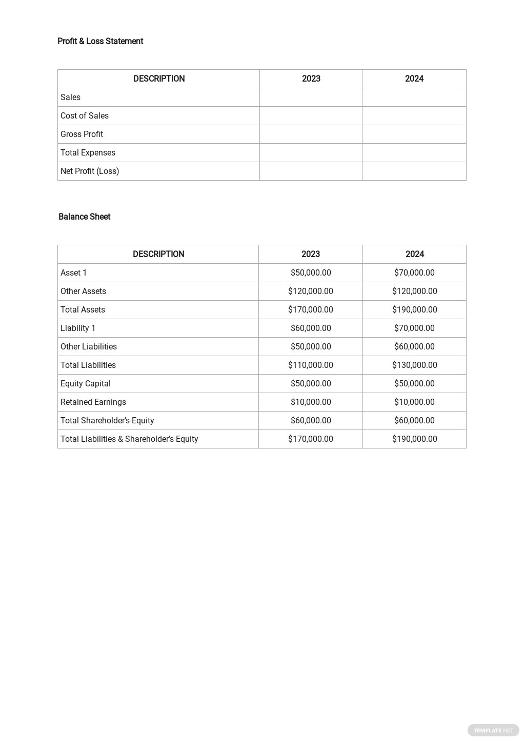 Financial Analysis Template 2.jpe