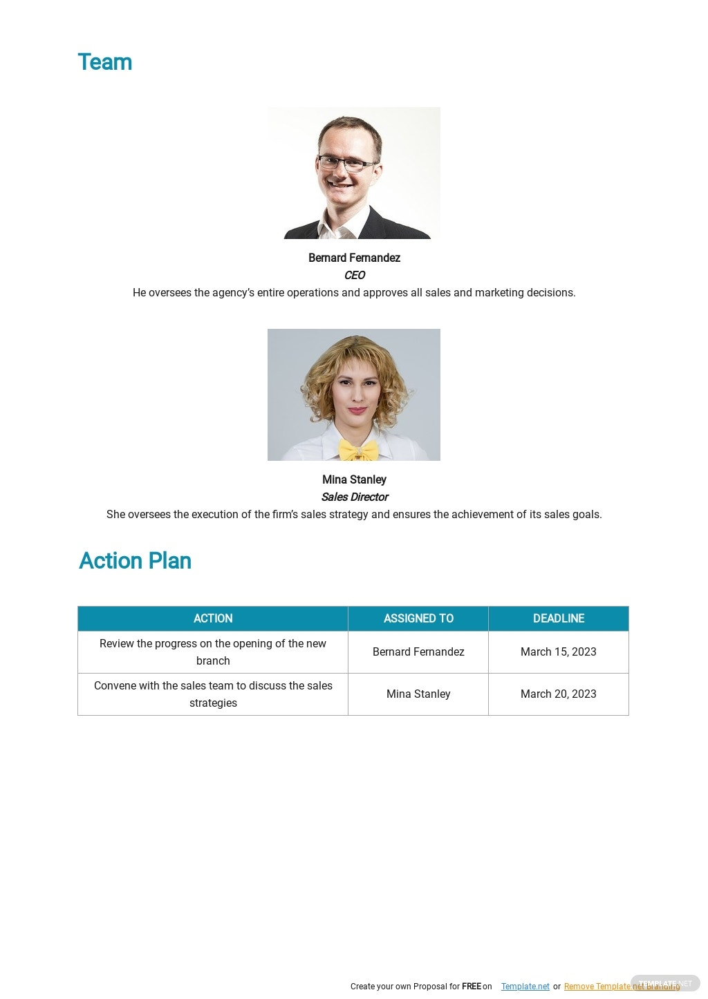Strategic Sales Plan Template 2.jpe