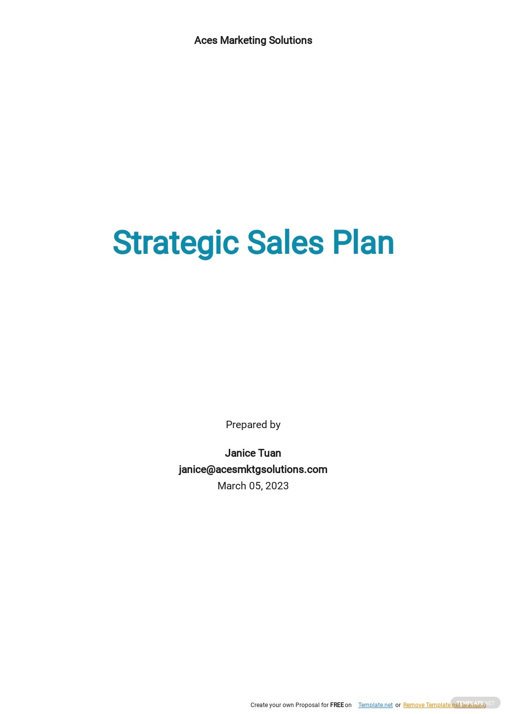 Strategic Sales Plan Template.jpe
