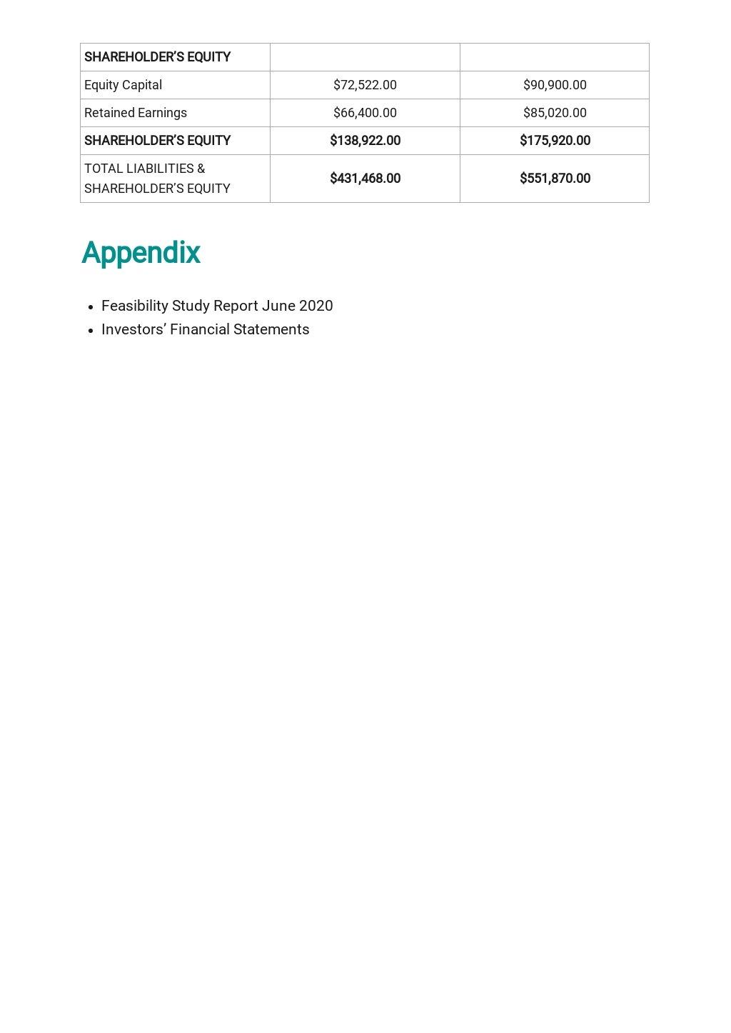 Startup Business Plan Template 9.jpe