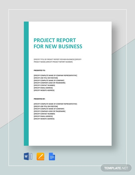Project Report for New Business Template