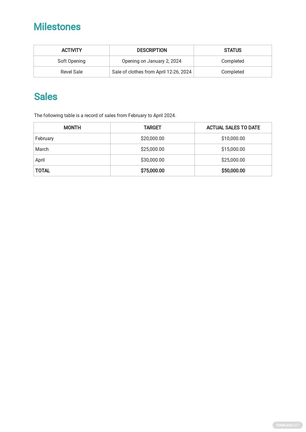 Sales Activity Report Template 2.jpe
