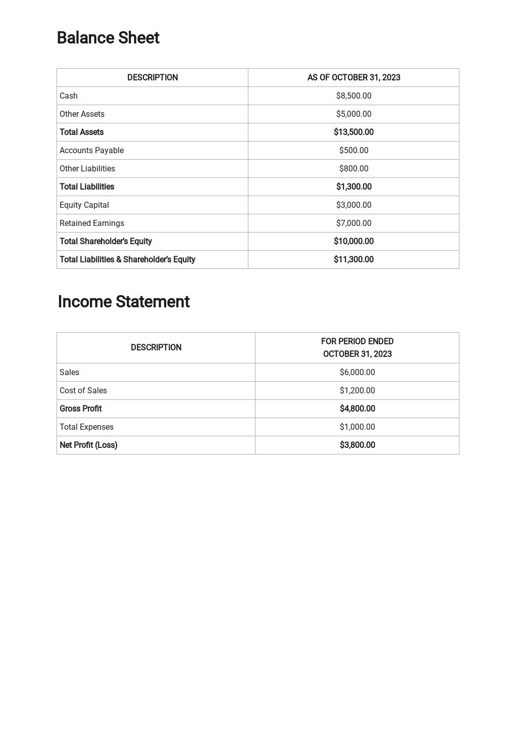 Sample Financial Report Template 2.jpe
