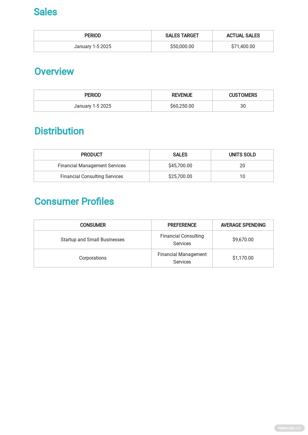 Daily Sales Report Template 2.jpe