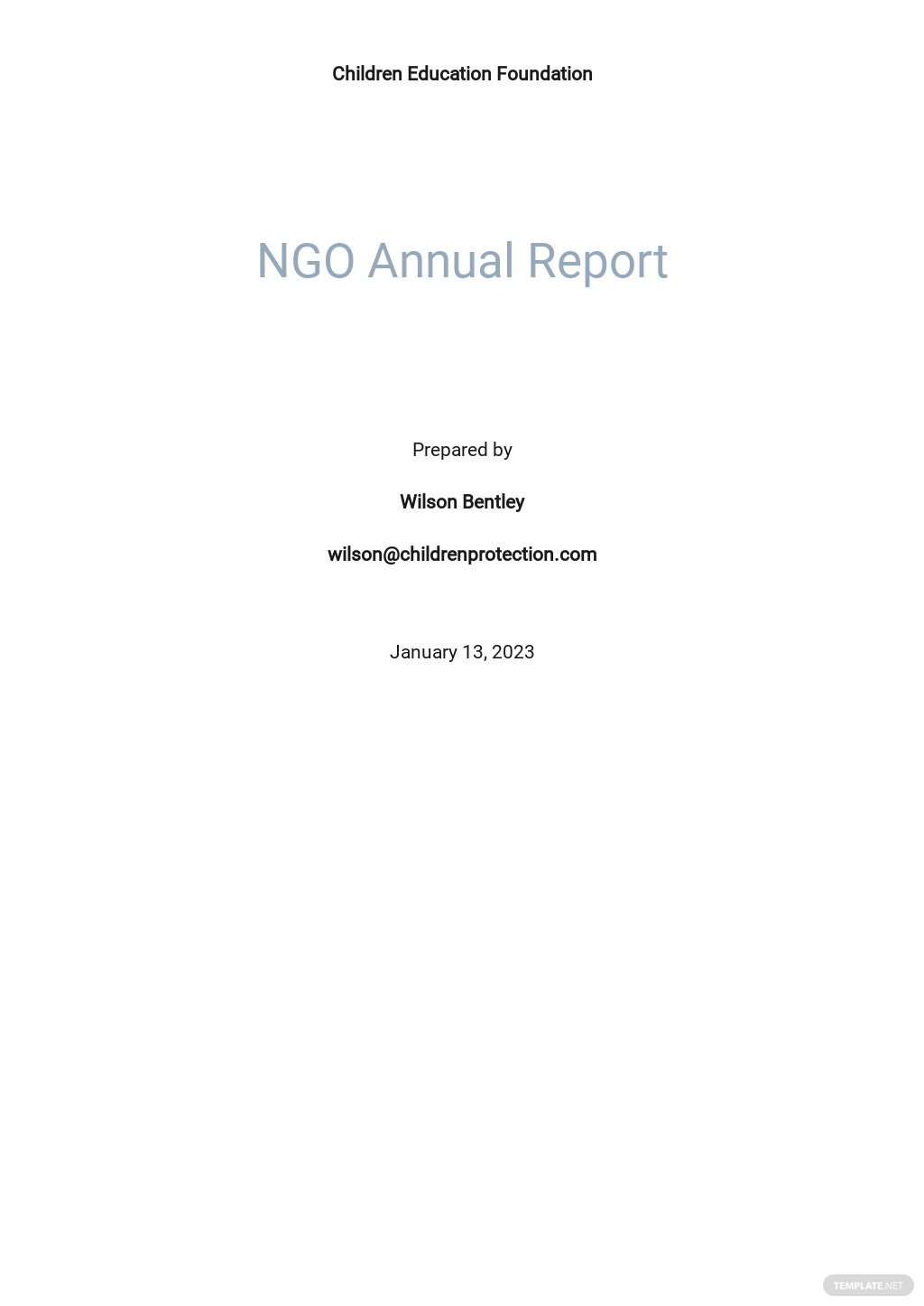 NGO Annual Report Template