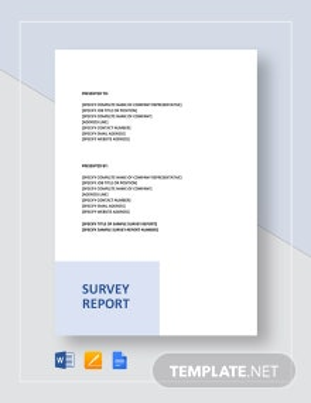 Sample Survey Report Template