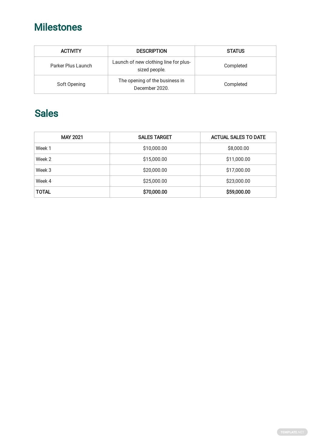 Weekly Sales Activity Report Template 2.jpe